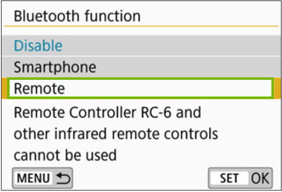 Bluetooth function menu with Remote highlighted