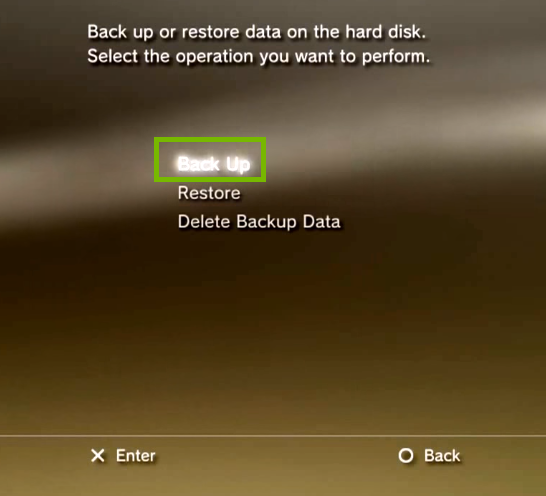 Backup utility with Back Up highlighted. Screenshot
