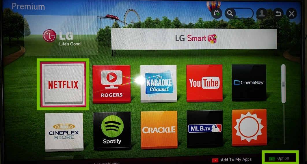 Premium menu with Netflix and Options highlighted.