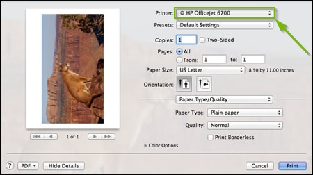 Screenshot of a common macOS print window highlighting the printer selection dropdown box.