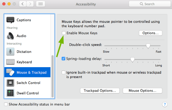 Enable Mouse Keys toggle box pointed out in Accessibility Preferences in macOS.