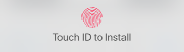 iOS touch ID to install.