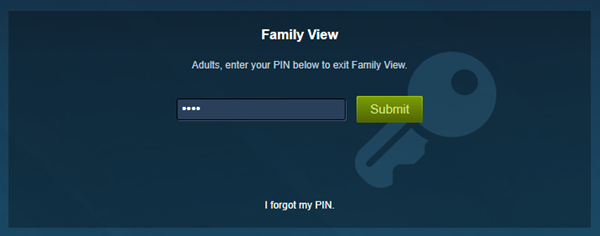 Typing the family view pin