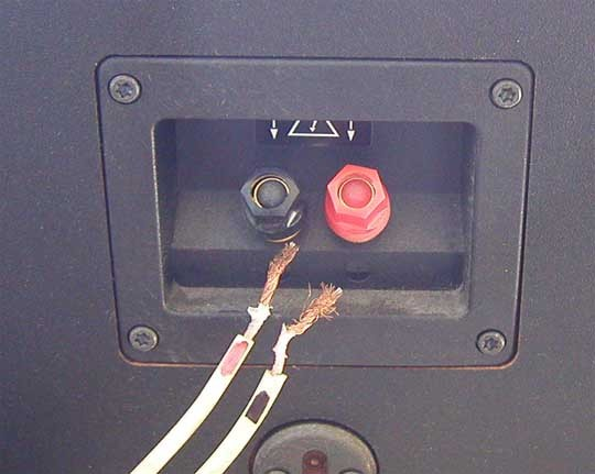 Speaker wire in poor condition being removed from speaker terminals. Illustration.