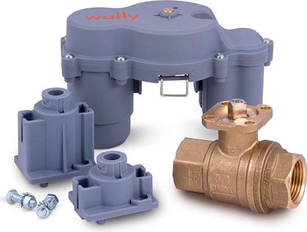 Wally Shutoff Valve