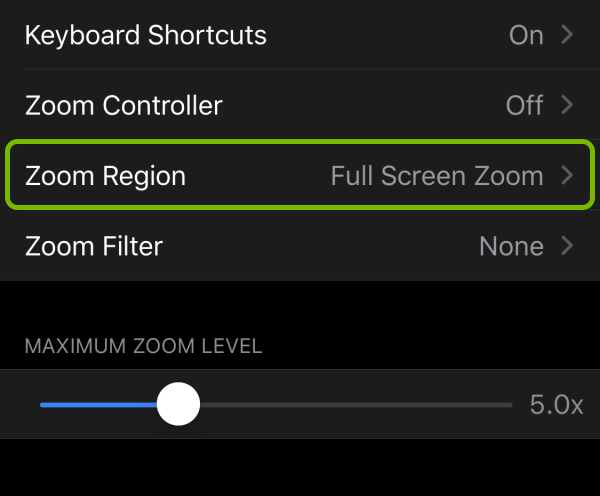 Zoom Region option highlighted in accessibility settings on iOS.