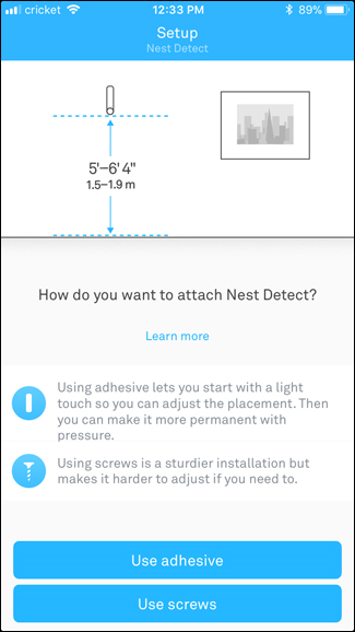 Nest Detect setup