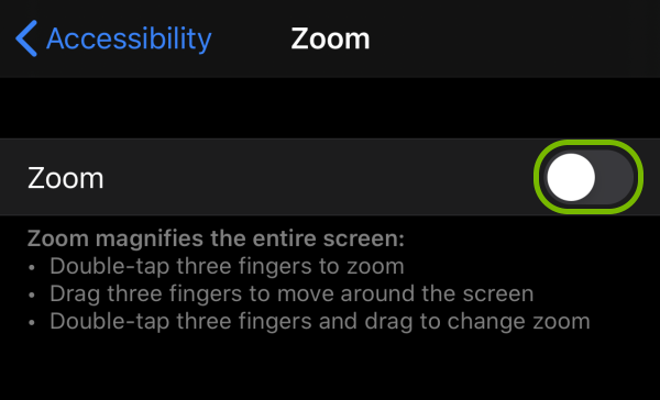 Toggle switch highlighted for Zoom feature in iOS settings.