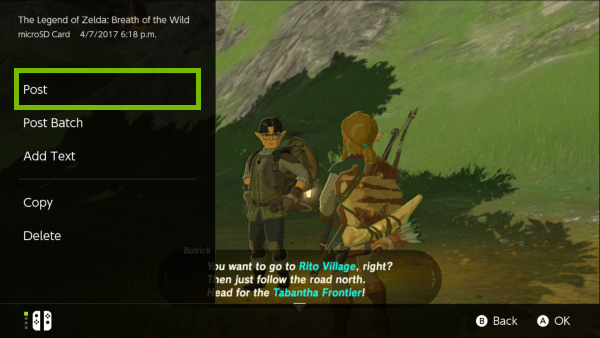 Post option highlighted for selected screenshot on Nintendo Switch.