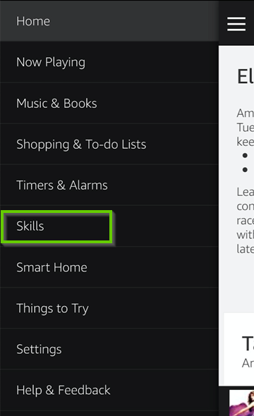 Amazon Alexa menu showing the skills selection