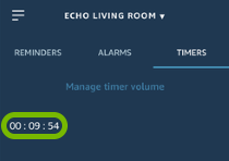 Listed timer highlighted in Alexa app.