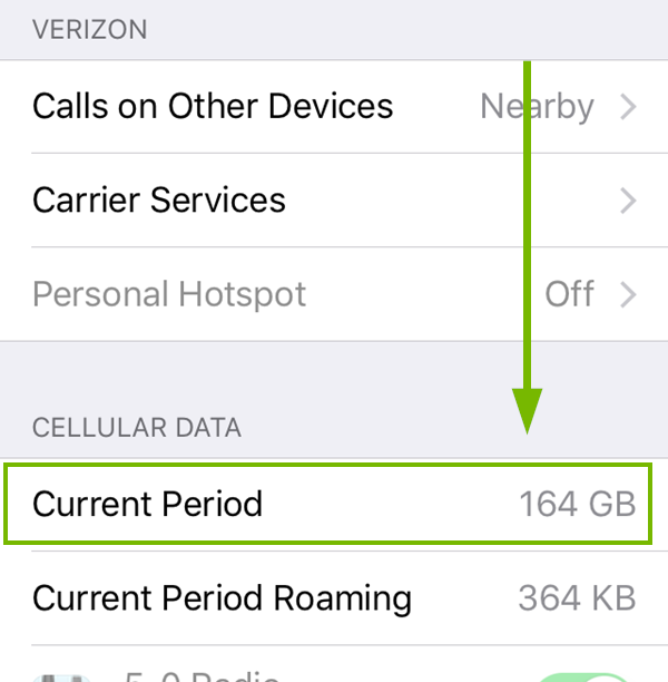 Cellular menu with Data usage highlighted. Screenshot
