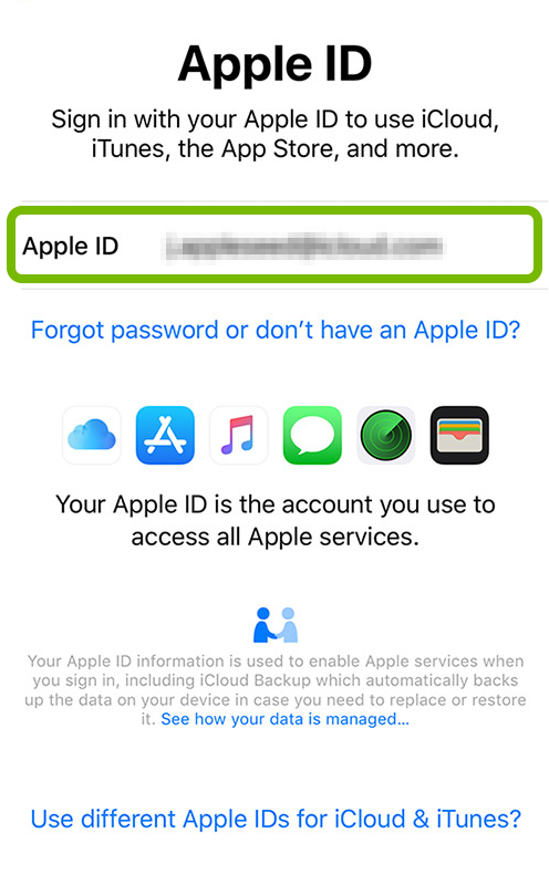 Apple ID entry field highlighted on sign in screen of iOS device setup.