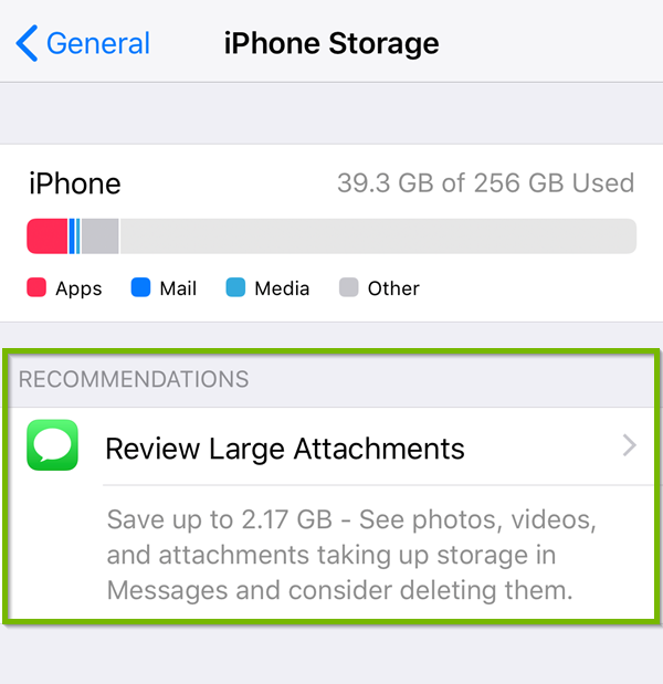 Storage with suggestion to auto delete old conversations highlighted.