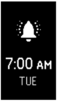 Alarm icon for Charge 2