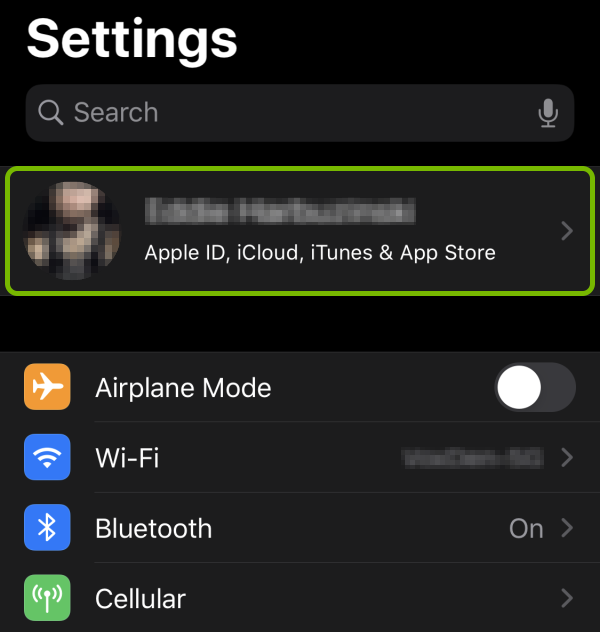 Apple ID highlighted in iOS settings.