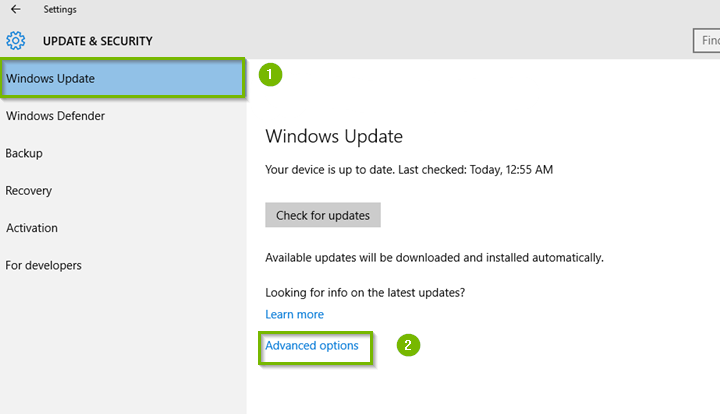 Windows 10 update and security screen highlighting advanced options.