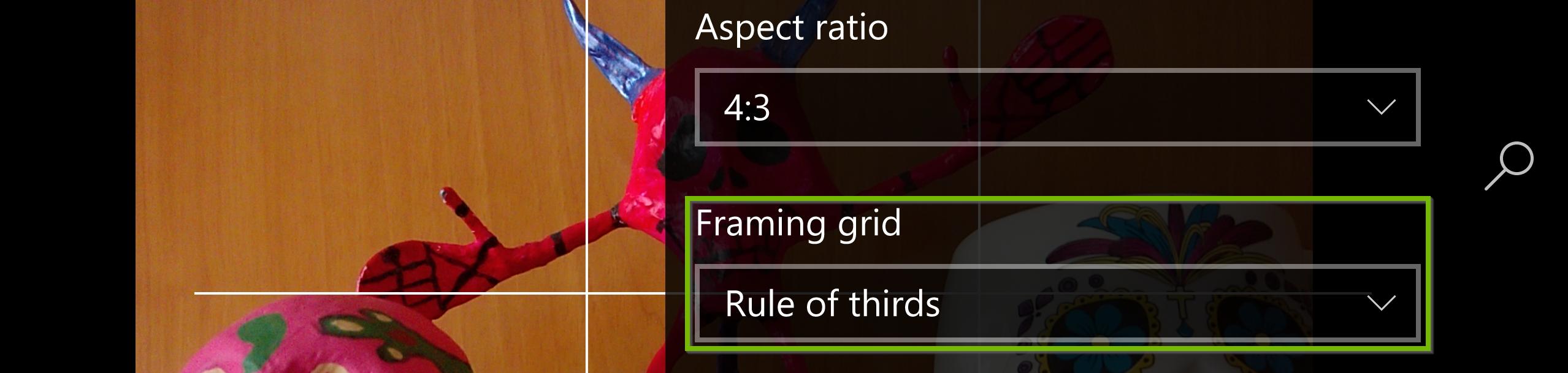 Framing grid settings. Screenshot.